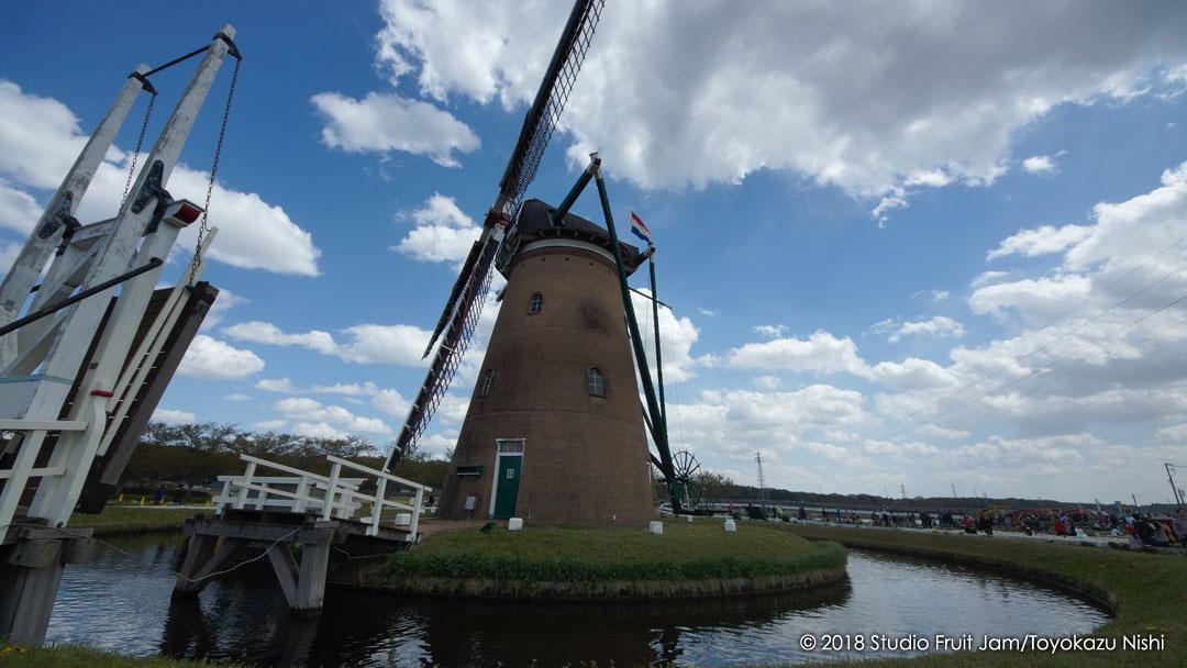 オランダ風車(リーフデ)